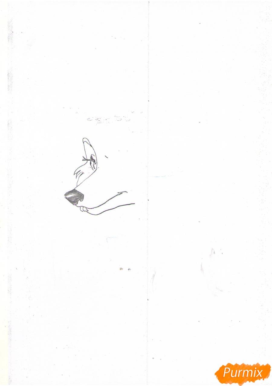 Рисуем портрет аниме волчицы - шаг 2
