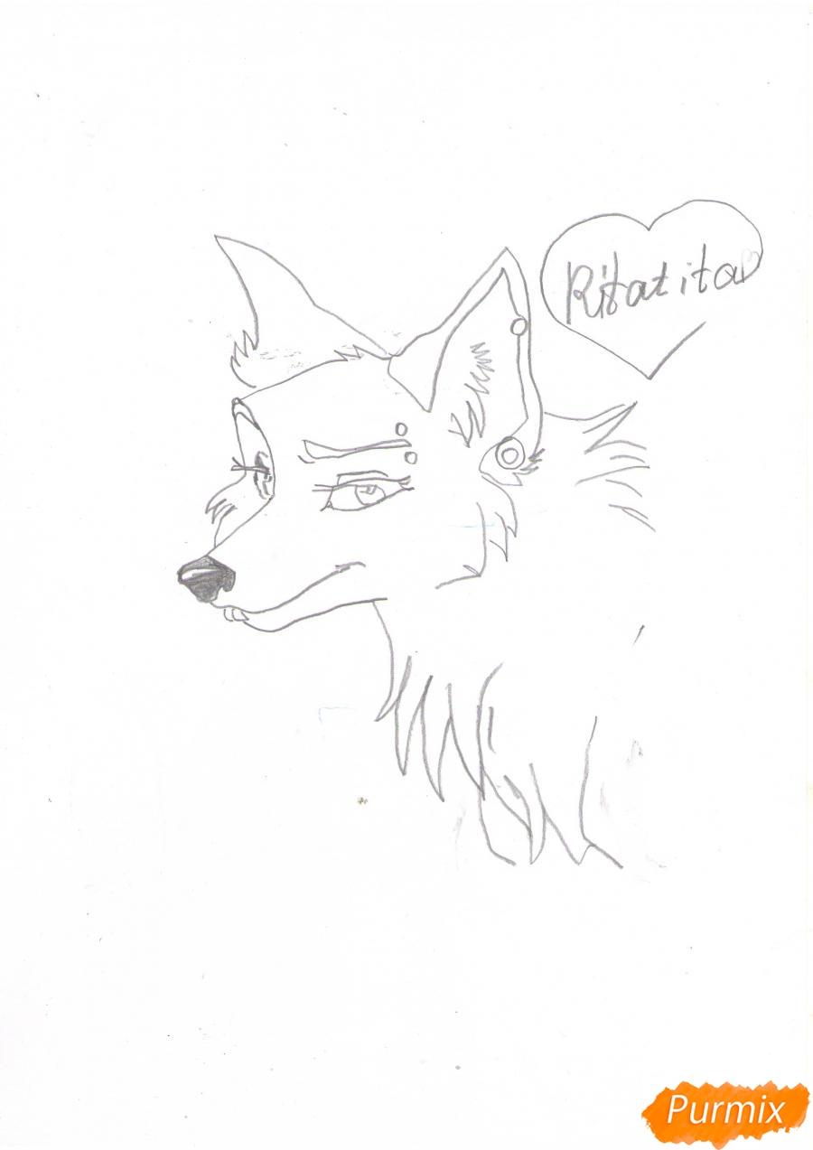 Рисуем портрет аниме волчицы - шаг 5