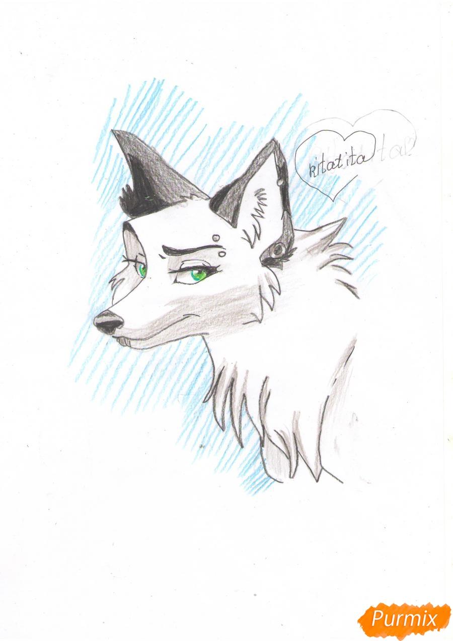 Рисуем портрет аниме волчицы - шаг 8