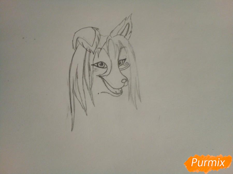 Рисуем волчицу с голубо-коричневым окрасом - шаг 2
