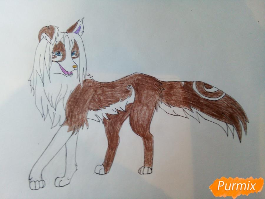 Рисуем волчицу с голубо-коричневым окрасом - шаг 7