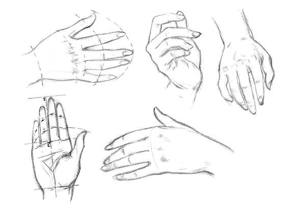 Как рисовать женские руки - шаг 1