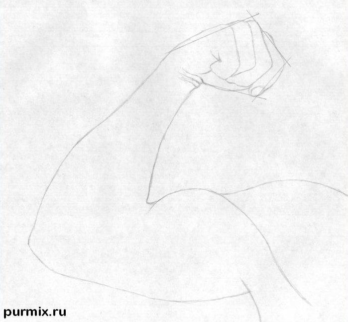 Рисуем бицепс простым