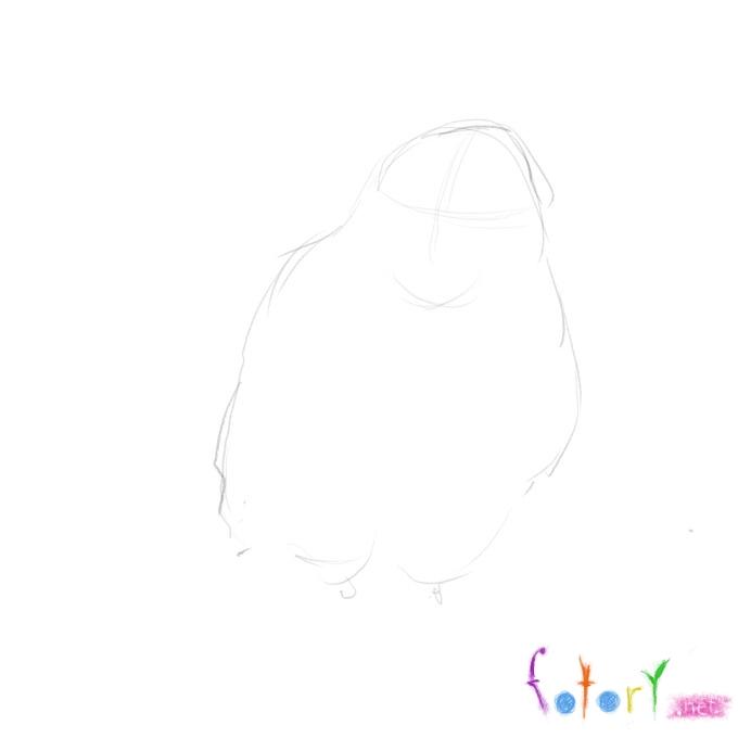 Рисуем реалистичную сову (филина) - шаг 1