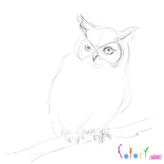 Рисуем реалистичную сову (филина) - шаг 5