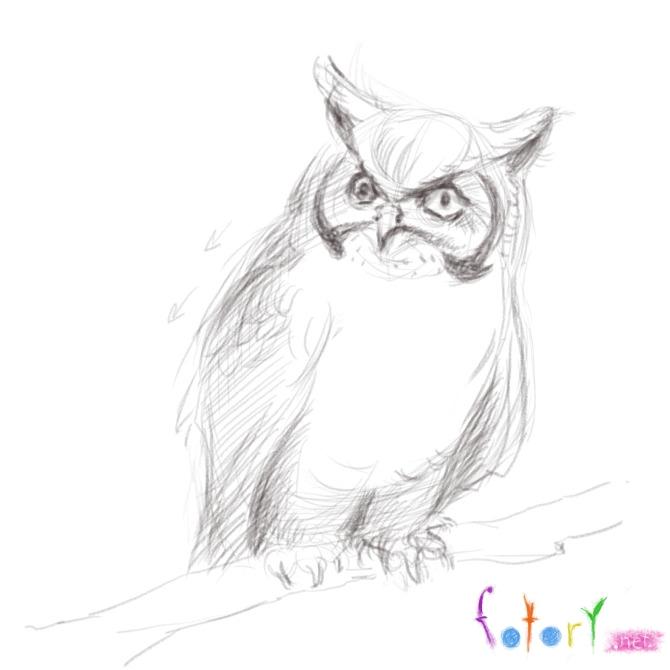 Рисуем реалистичную сову (филина) - шаг 6