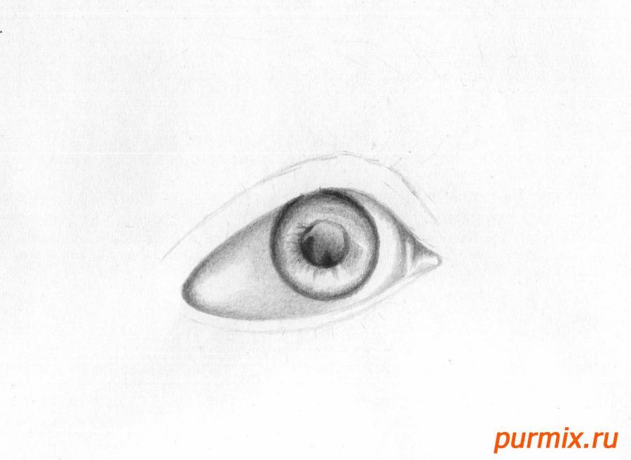 Рисуем глаз девушки - шаг 3