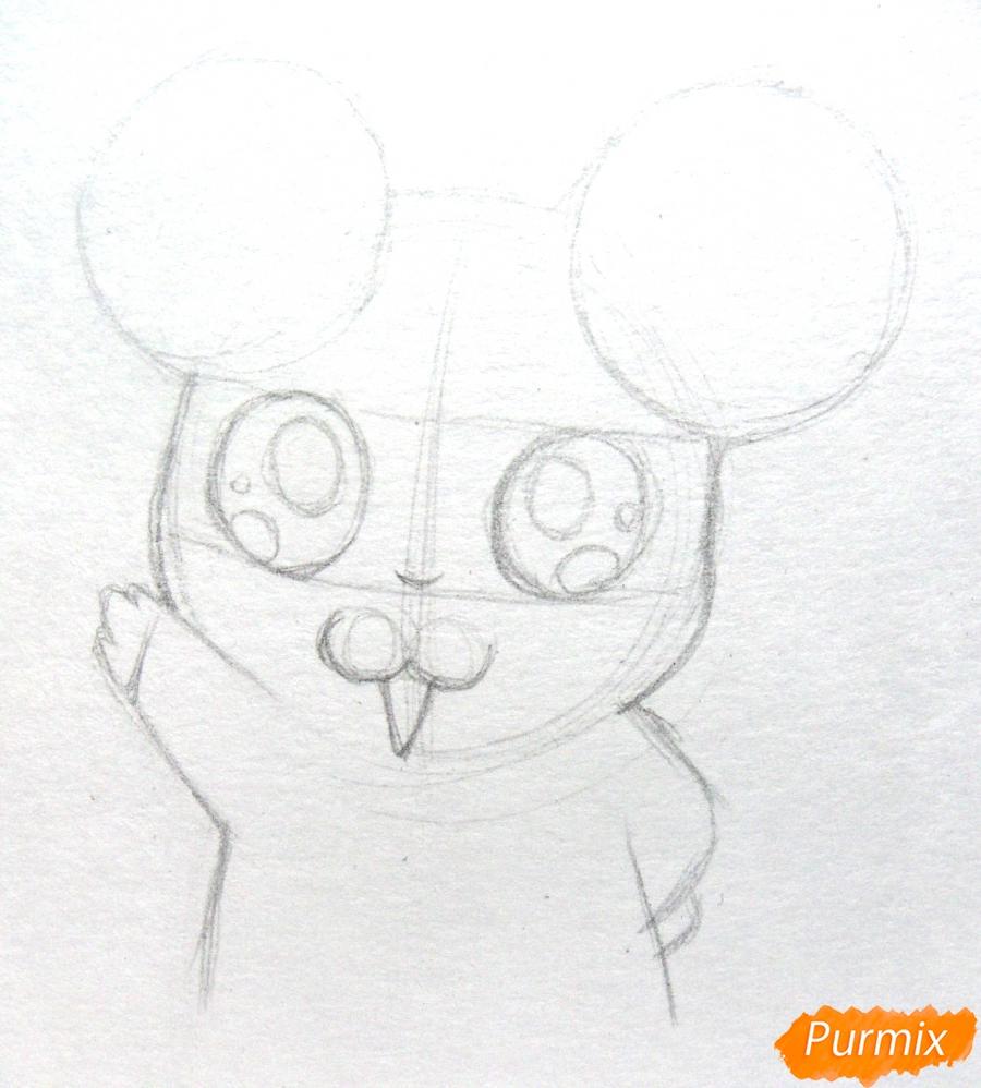 Рисуем маленького чиби хомячка карандашами - шаг 3