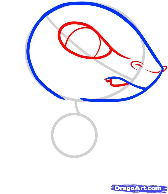 Рисуем динозавра раптора в стиле чиби - шаг 3