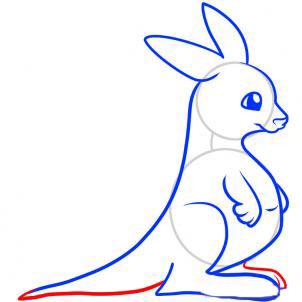 Рисуем кенгуру для детей - шаг 6