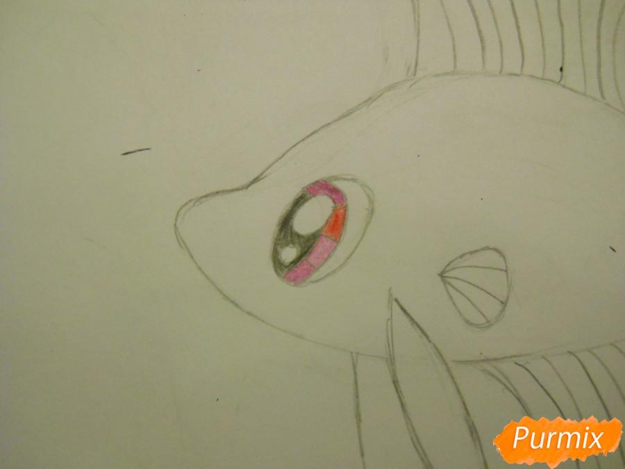 Рисуем и раскрасить рыбку ребёнку - шаг 4