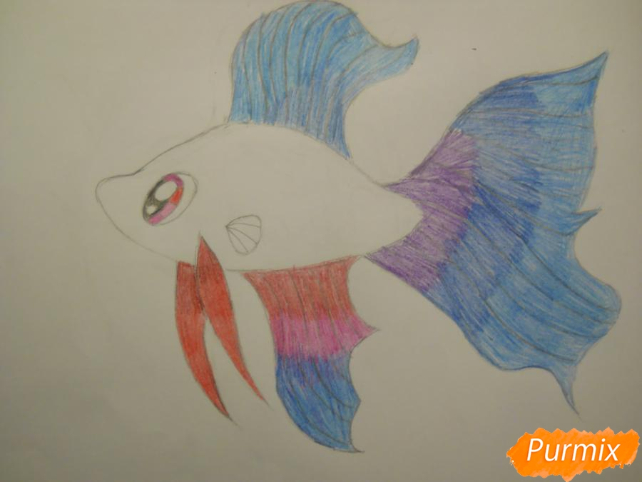 Рисуем и раскрасить рыбку ребёнку - шаг 8