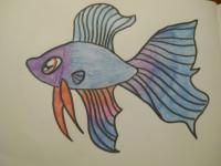 и раскрасить рыбку ребёнку карандашами