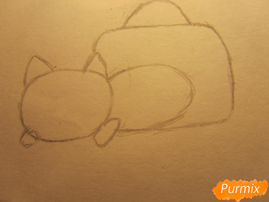 Рисуем котика спящего в кружке детям карандашами - шаг 1