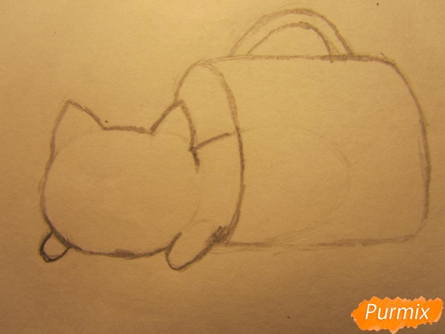 Рисуем котика спящего в кружке детям карандашами - шаг 2