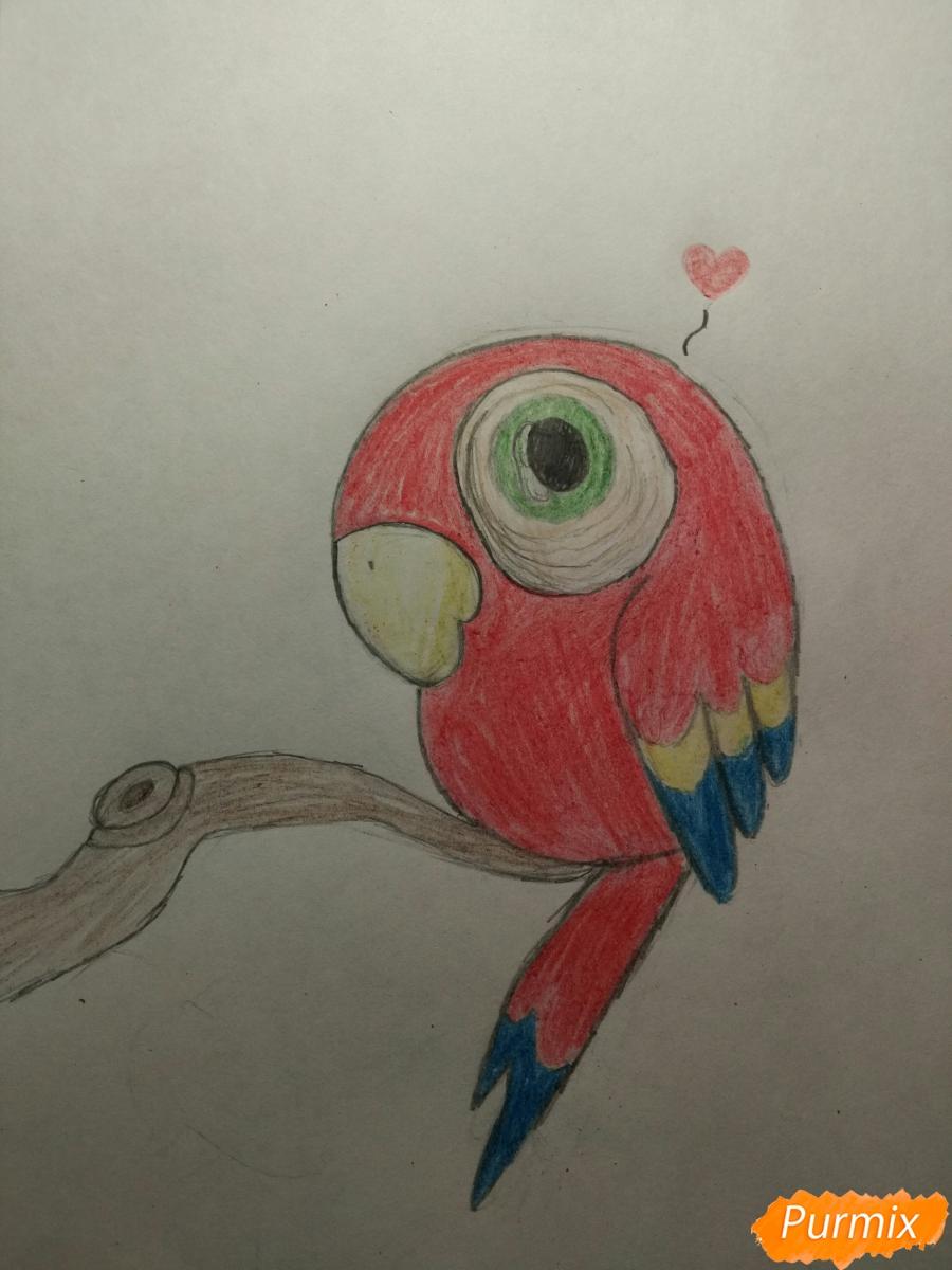 Как нарисовать милого попугайчика для ребенка карандашами поэтапно