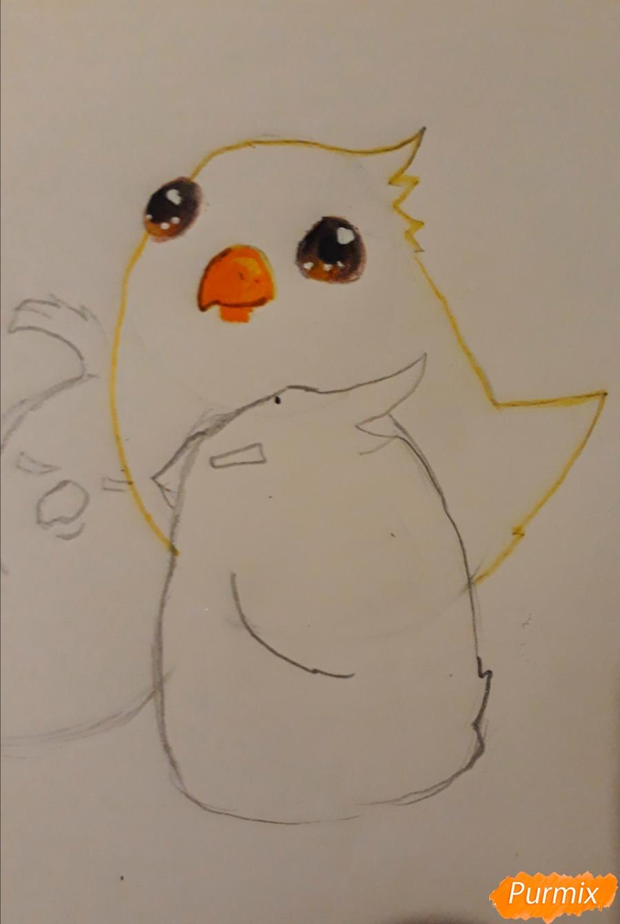 Рисуем трех милых попугайчиков карандашами - шаг 8