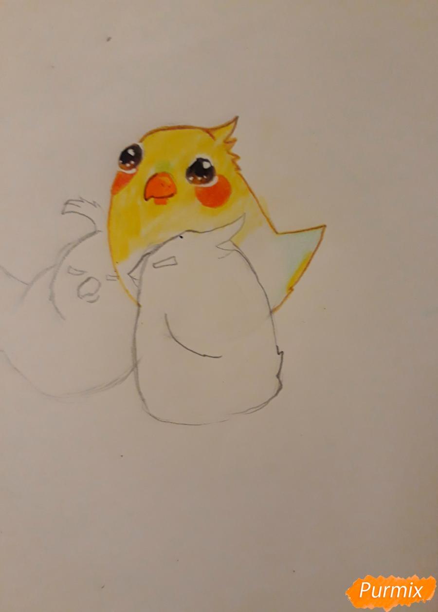 Рисуем трех милых попугайчиков карандашами - шаг 9