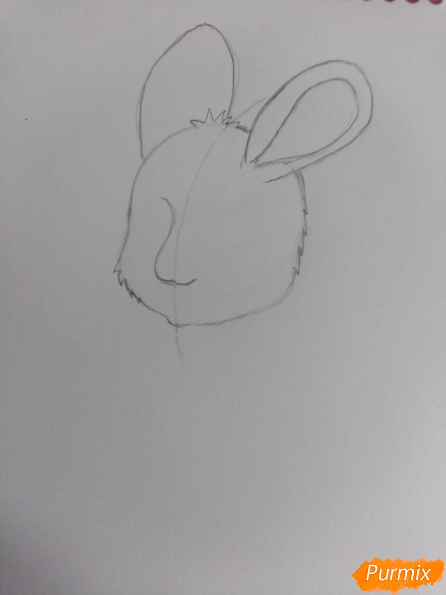 Рисуем зайку с морковкой ребенку - шаг 5