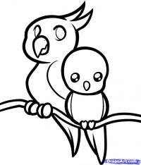 Фото двух маленьких попугаев  ребенку карандашом