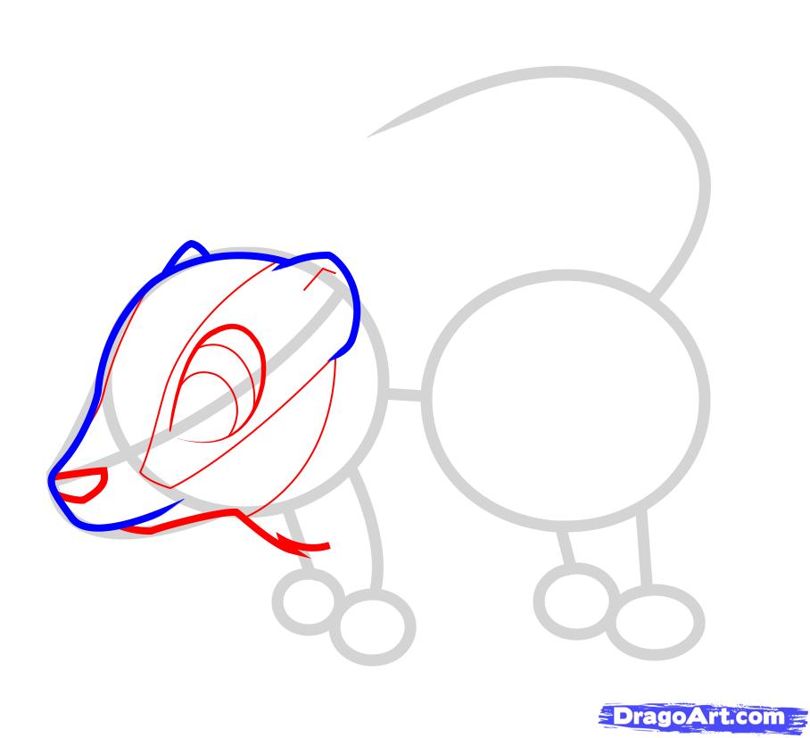 Как ребенку нарисовать карандашом барсука