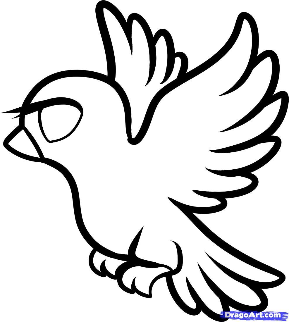 рисунки голубей карандашом: