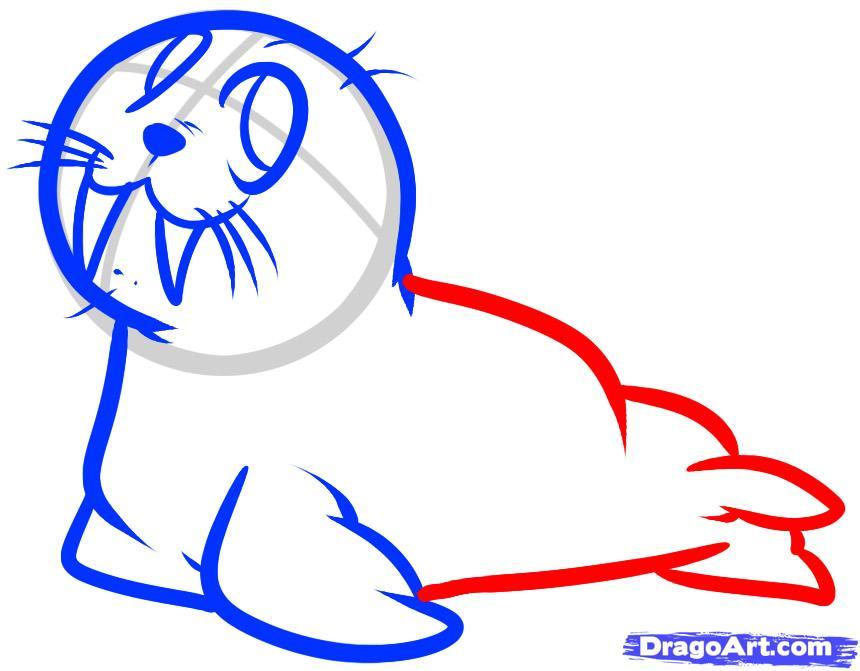 Рисуем моржа - шаг 6