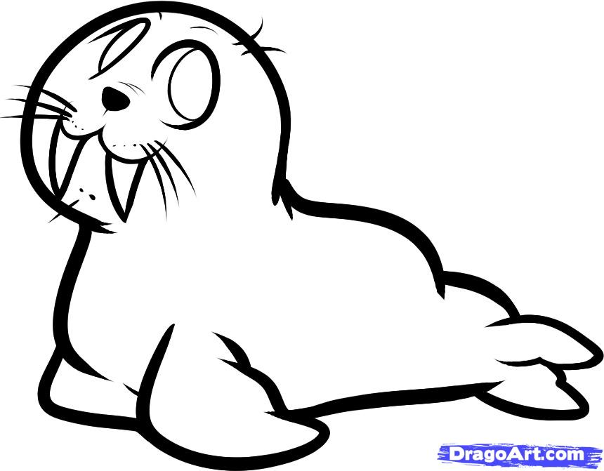 Рисуем моржа - шаг 7