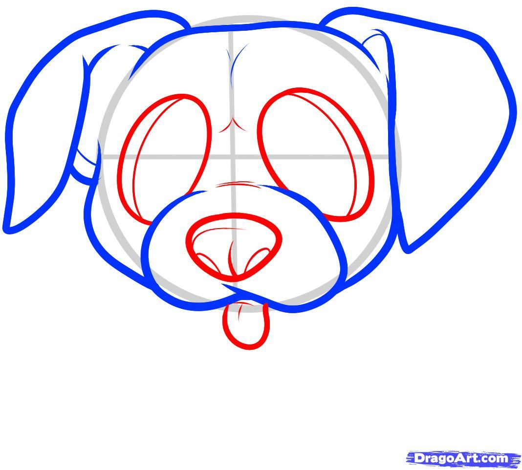Рисуем щенка боксера ребенку - шаг 4
