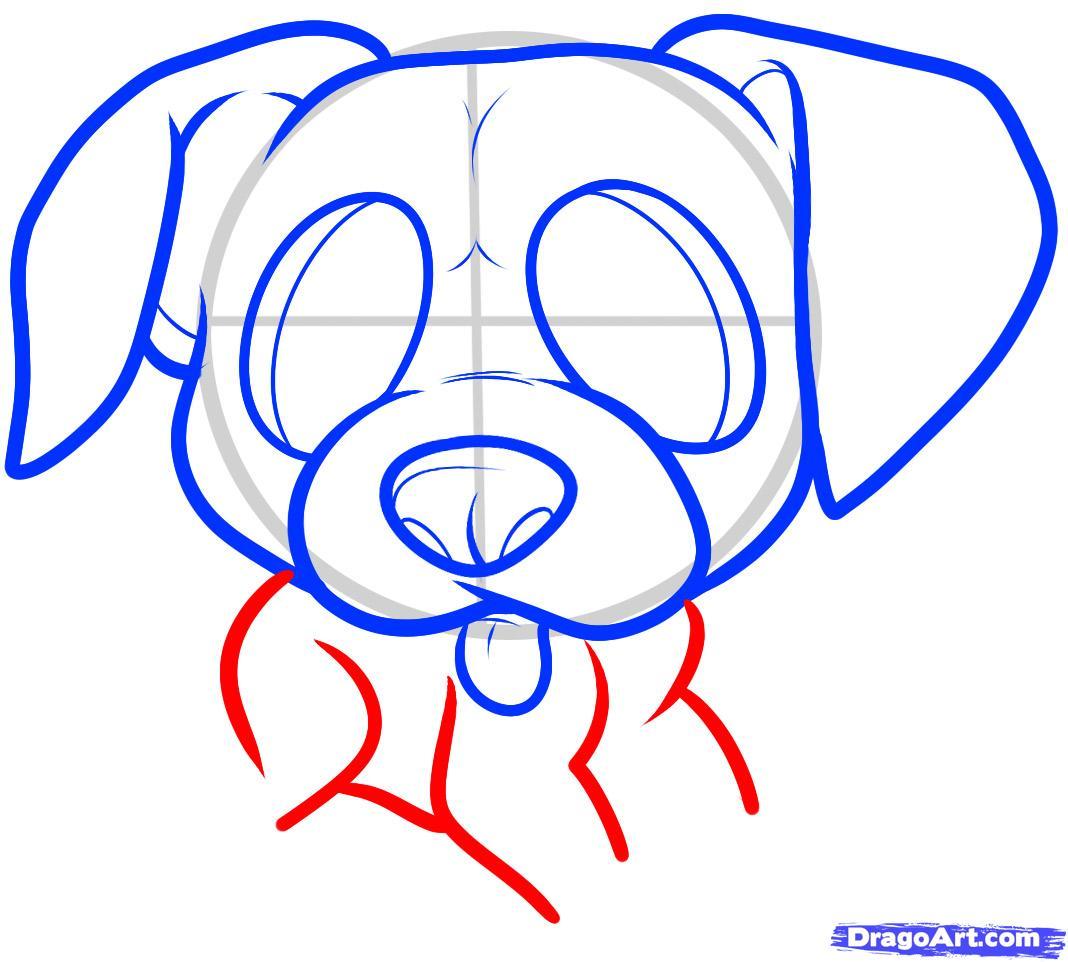 Рисуем щенка боксера ребенку - шаг 5