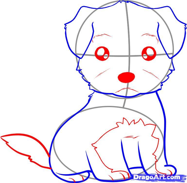 Рисуем щенка терьера ребенку - шаг 4