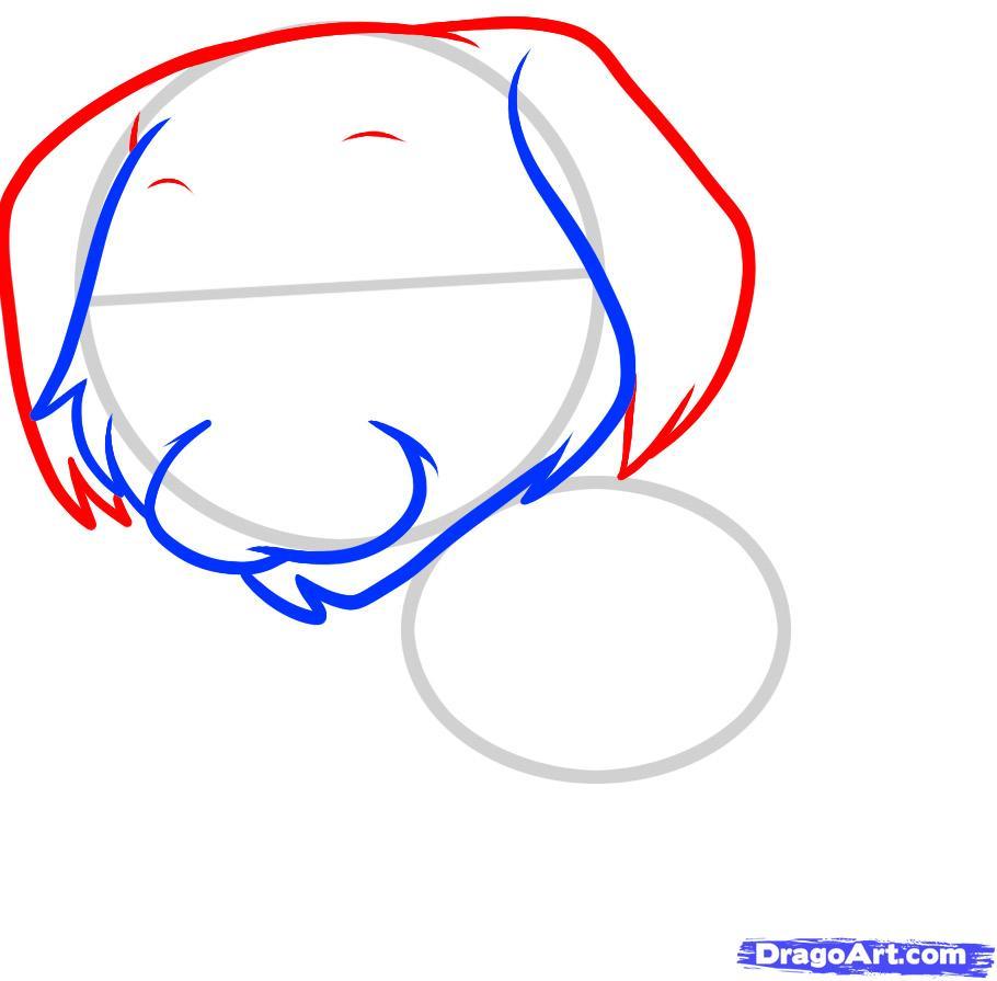 Рисуем щенка золотистого ретривера ребенку - шаг 3
