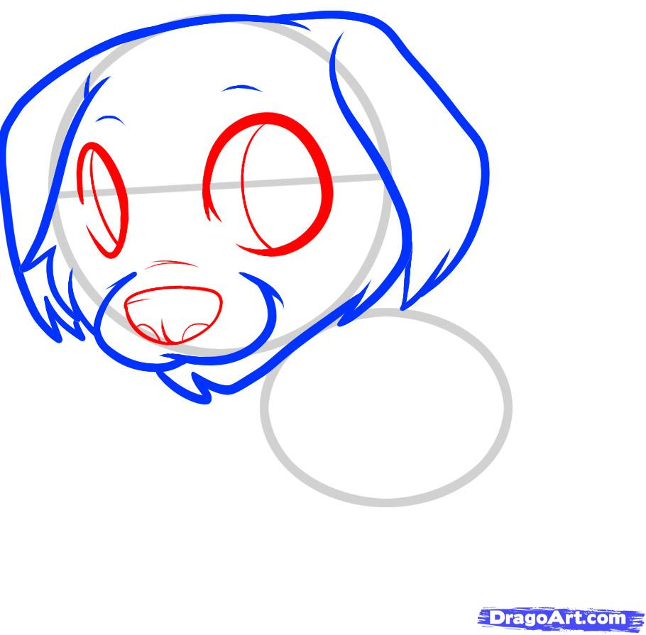 Рисуем щенка золотистого ретривера ребенку - шаг 4