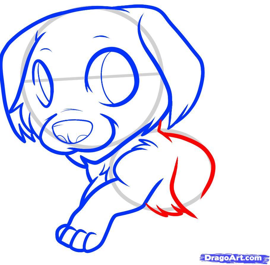Рисуем щенка золотистого ретривера ребенку - шаг 6