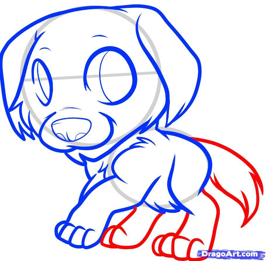 Рисуем щенка золотистого ретривера ребенку - шаг 7