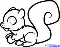 Как просто нарисовать белочку с орехом ребенку карандашом