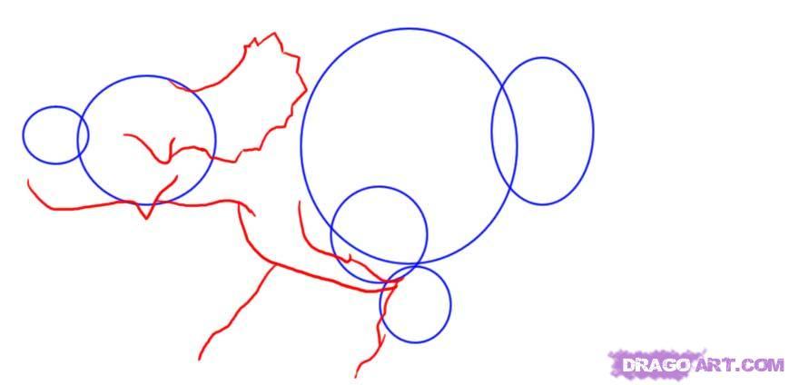 Рисуем Трицератопса  для начинающих - шаг 2