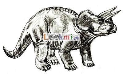 Как нарисовать Трицератопса карандашом поэтапно