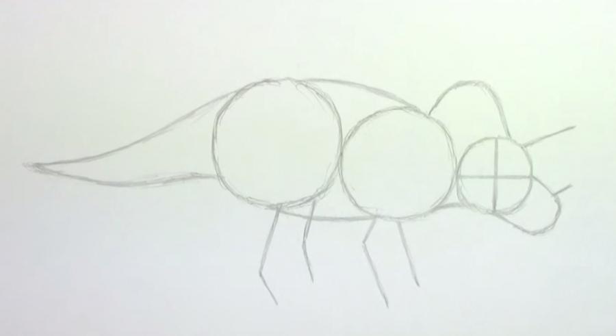 Как научиться рисовать трицератопса простым - шаг 2