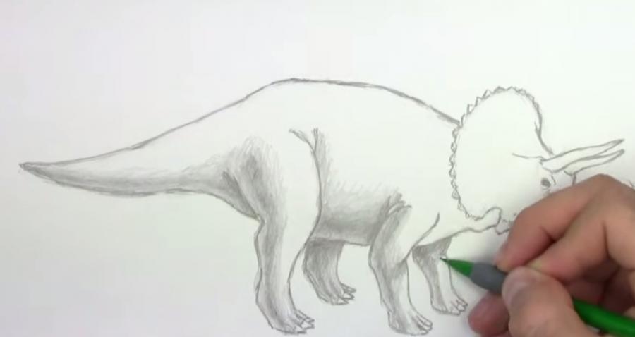 Как научиться рисовать трицератопса простым - шаг 5