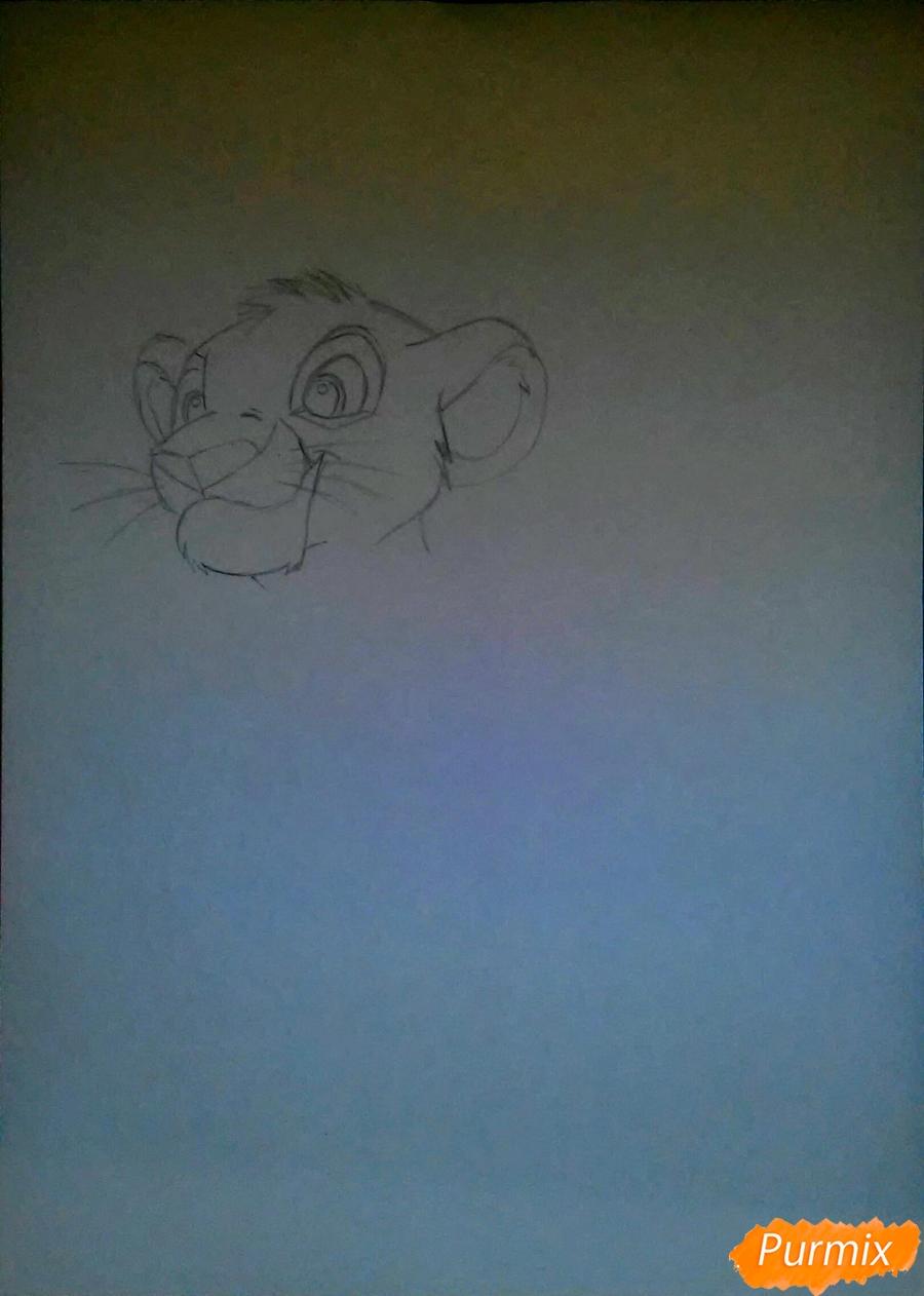 Рисуем и раскрасить Симбу - фото 1