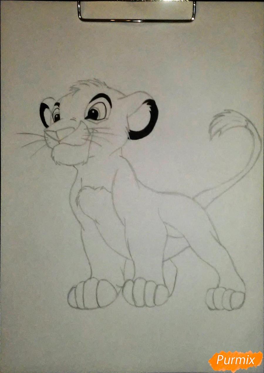 Рисуем и раскрасить Симбу - фото 4