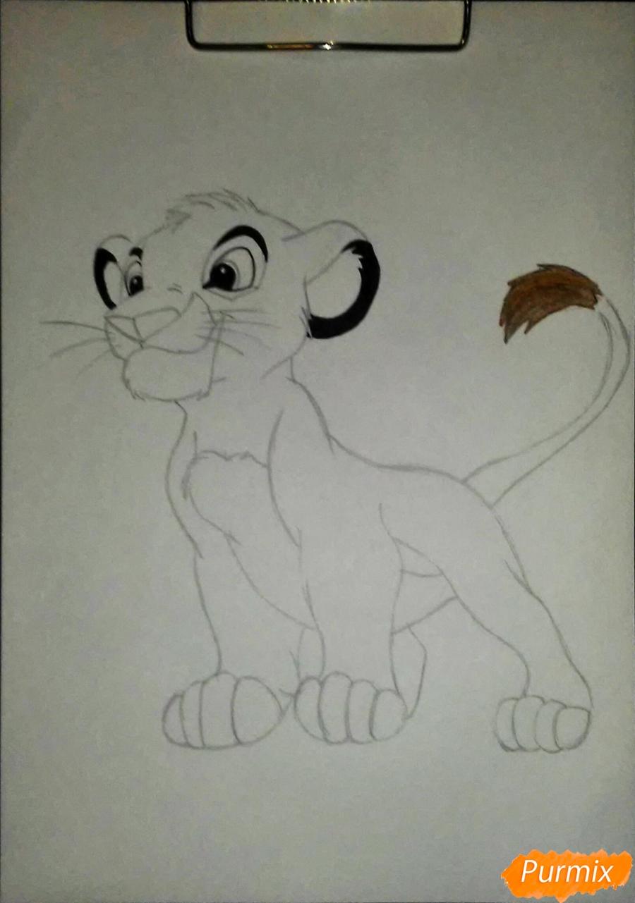Рисуем и раскрасить Симбу - фото 5