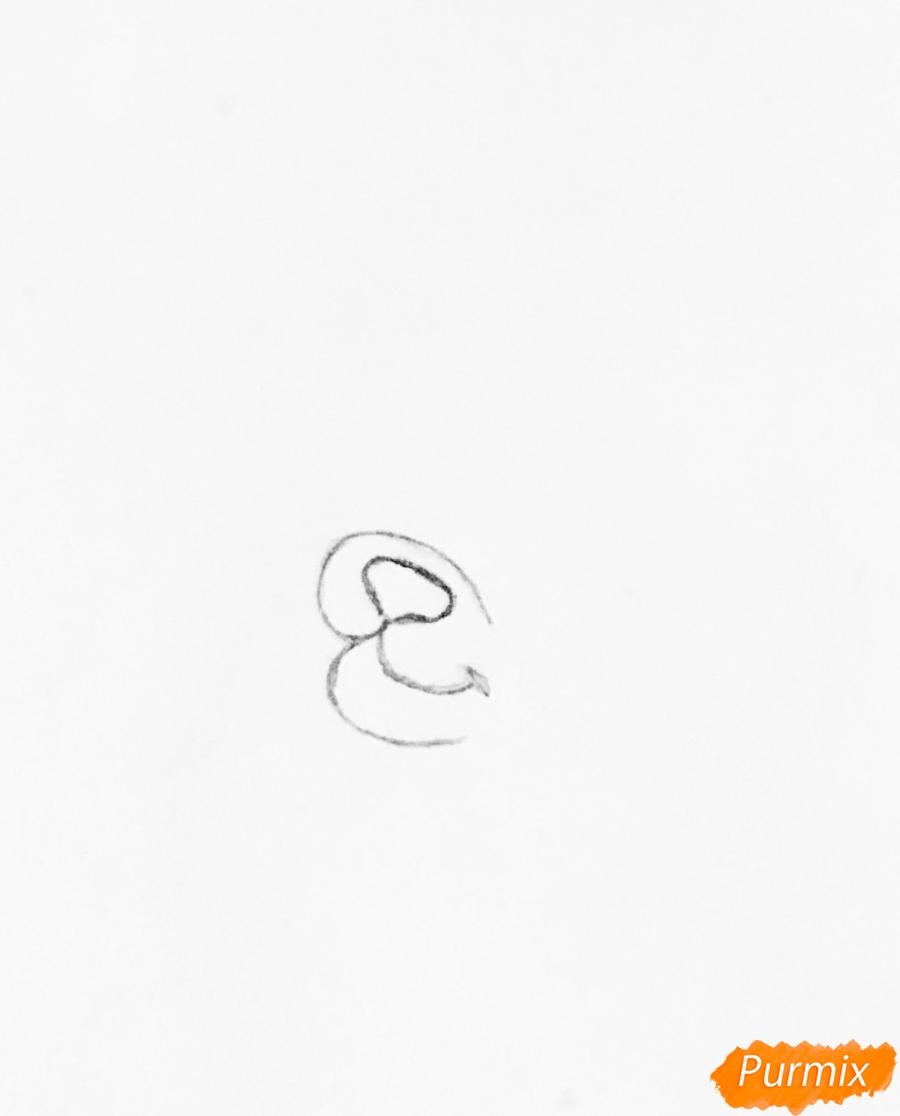 Рисуем кошечку по имени Сокровище питомца Ариэль из мультфильма Palace Pets - шаг 1