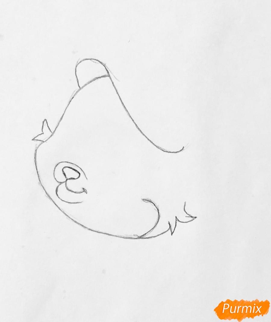 Рисуем кошечку по имени Сокровище питомца Ариэль из мультфильма Palace Pets - шаг 2