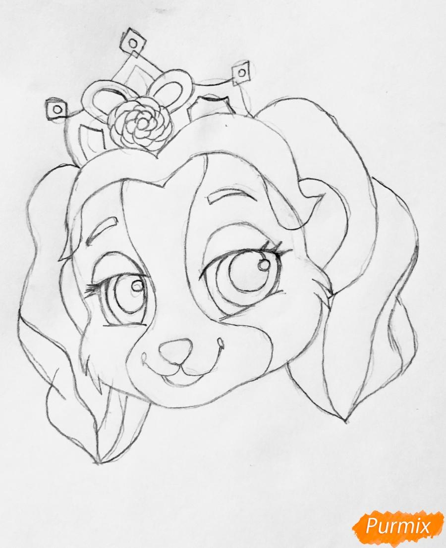 Рисуем собачку Крошку питомца Бель из мультфильма Palace Pets - фото 5