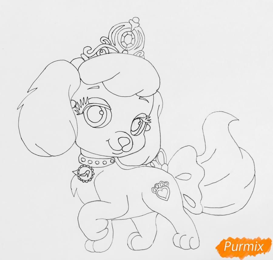 Рисуем собачку Тыковку питомца Золушки из мультфильма Palace Pets - фото 7