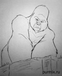 Керчака из Тарзана простым карандашом