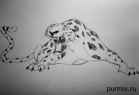 леопарда Сабора из Тарзана простым карандашом
