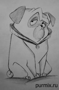 Фото пса Перси из Покахонтас простым карандашом